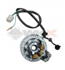 Piece Stator d'allumage DAYTONA ANIMA de Pit Bike et Dirt Bike