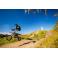 Piece Pit Bike YCF BIGY Factory 190 MX ZE - édition 2020 de Pit Bike et Dirt Bike