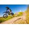 Piece Pit Bike YCF BIGY Factory Daytona 190 MX - édition 2020 de Pit Bike et Dirt Bike