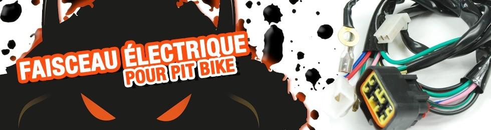 Piece Faisceau électrique Pit Bike et Dirt Bike